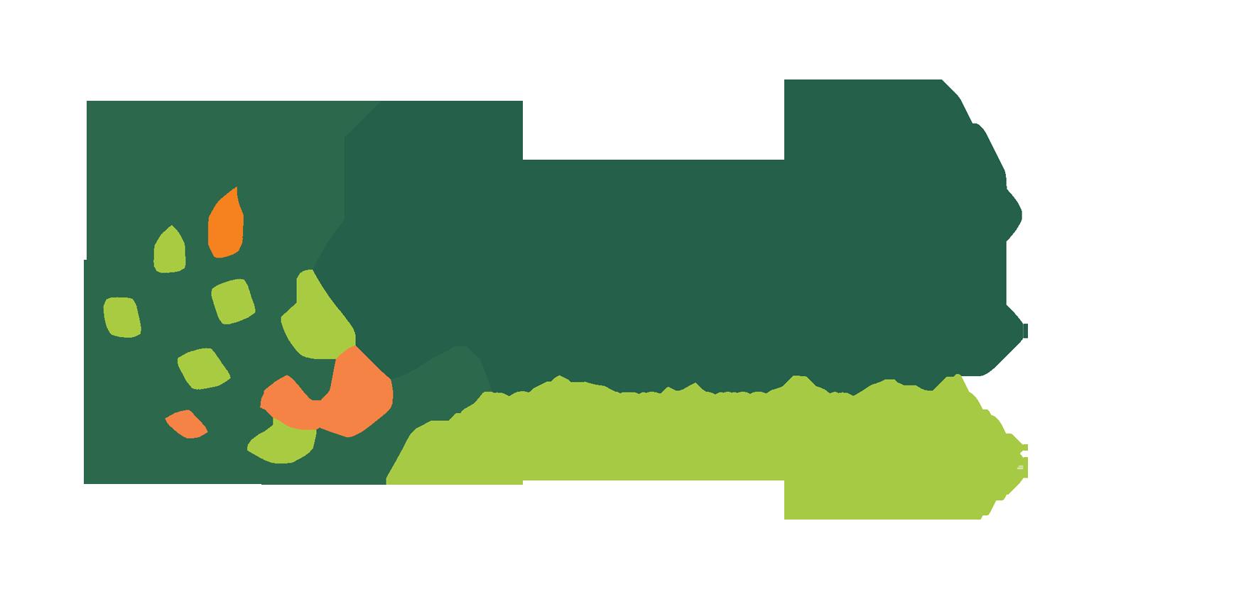 Codisoft logo